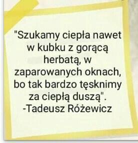 Truskawkowalalabebe's Cover Photo