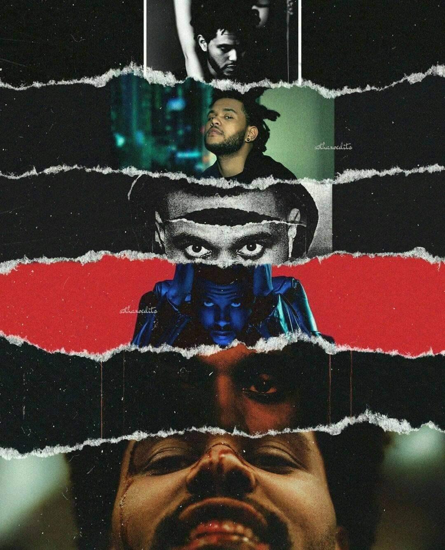 FabianMojaRroSZ's Cover Photo