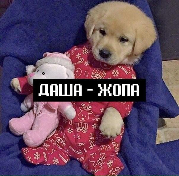 zagorskayad_'s Cover Photo