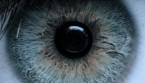 JessiJauregui's Cover Photo