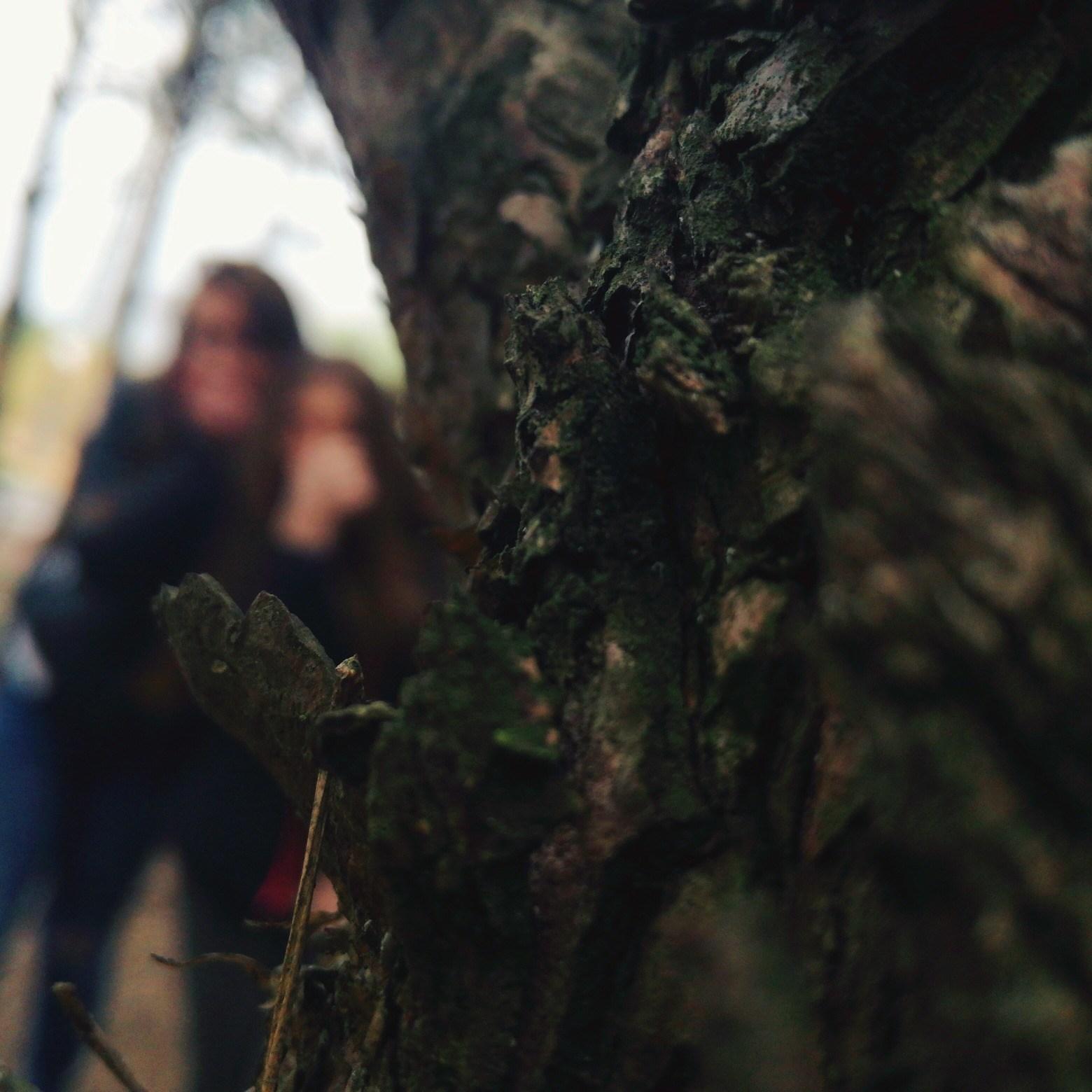 xxlucekx's Cover Photo