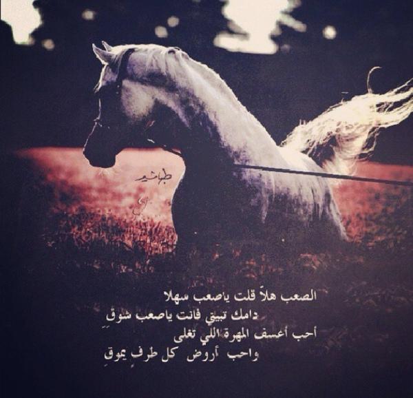 نورة Noura95 H 44 Answers 17 Likes Askfm