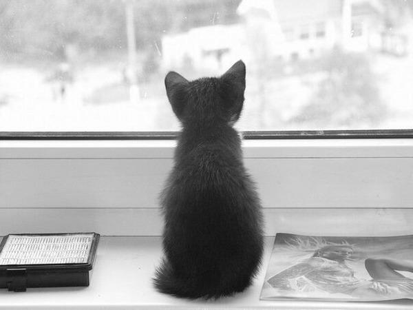 картинки скучно грустно одиноко милый статьи