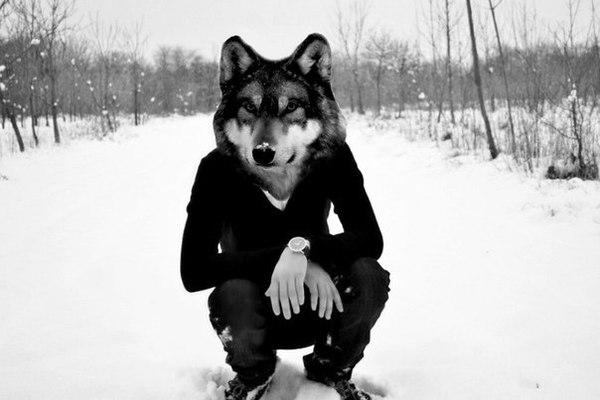 создается иллюзия картинки человек с головой волка на аву сожалению