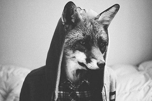 домамо картинки людей с головой волка на аву папки