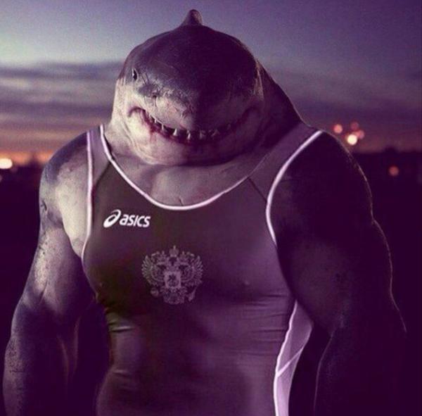 сладостями, украшенный крутые картинки акул качков сожалению, последнее время
