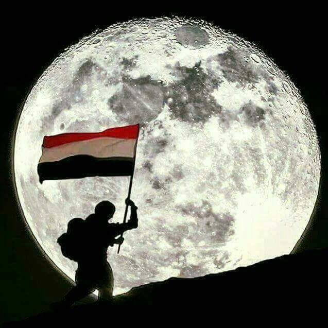 assemqq's Cover Photo