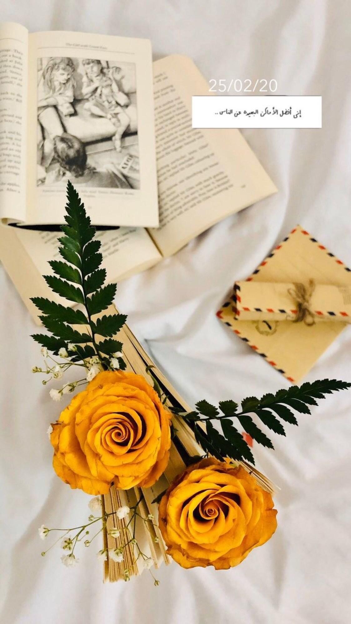 noor_moneer's Cover Photo