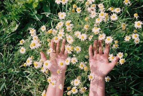 VladaSe's Cover Photo