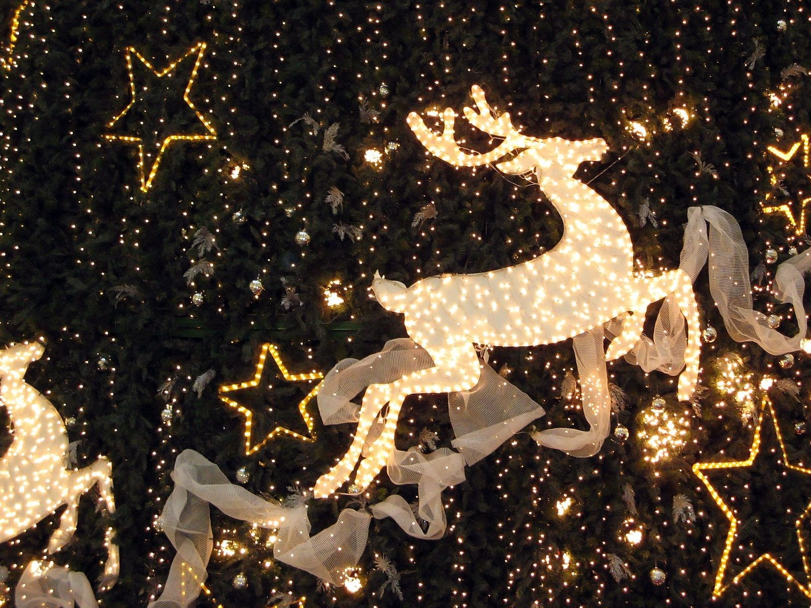 Magicofchristmas's Cover Photo
