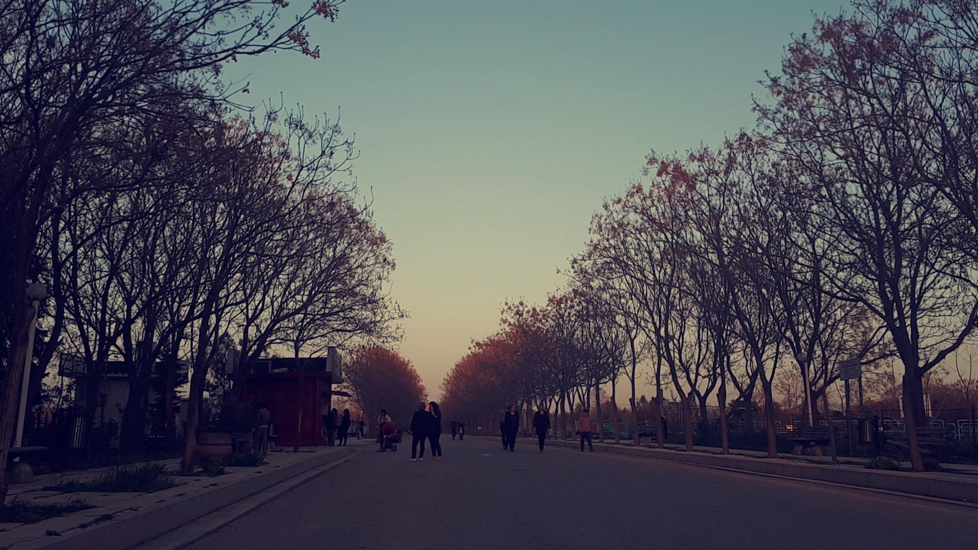 resaresali's Cover Photo