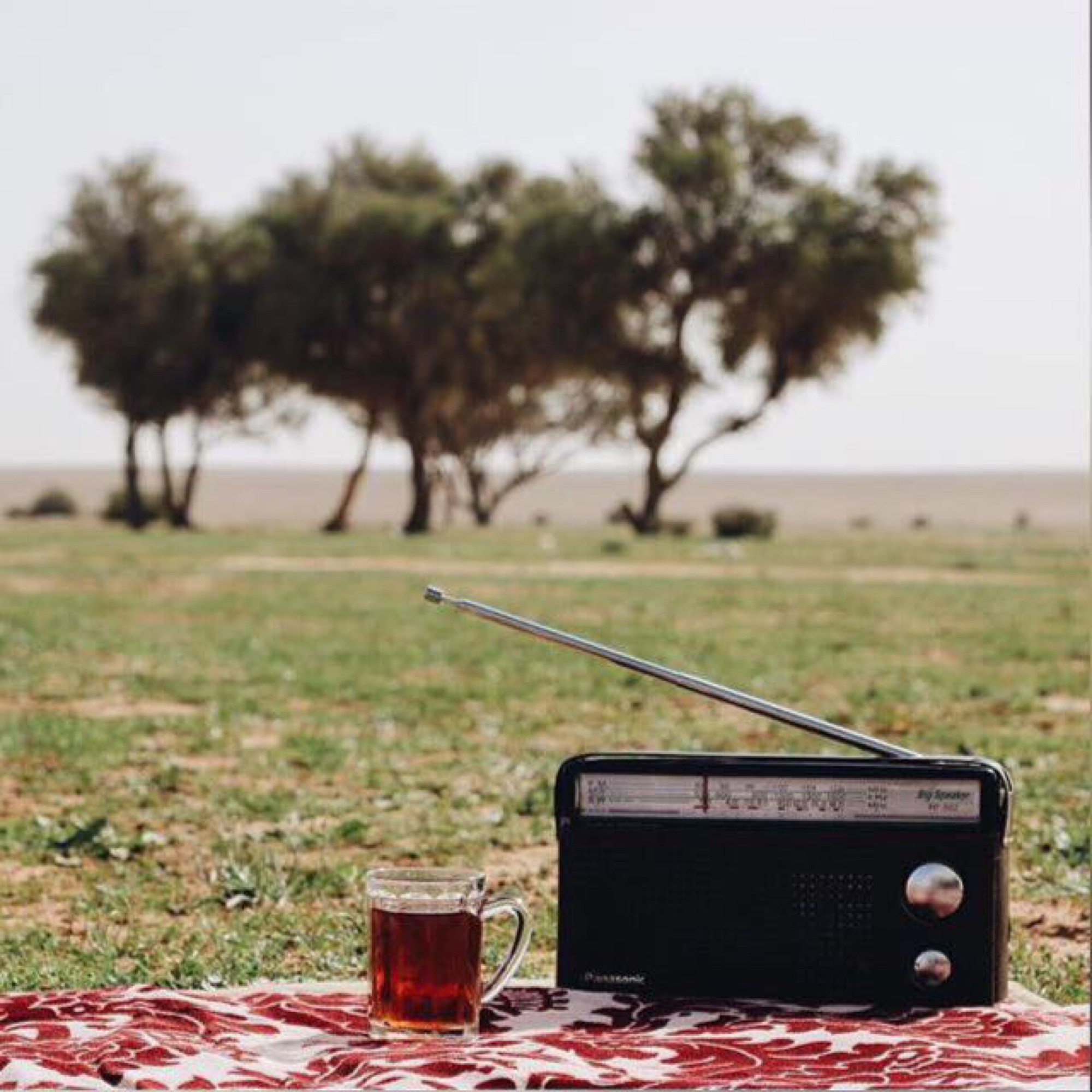 asma_mutlaq's Cover Photo