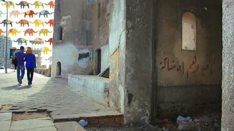 Mostafa_Temoz's Cover Photo