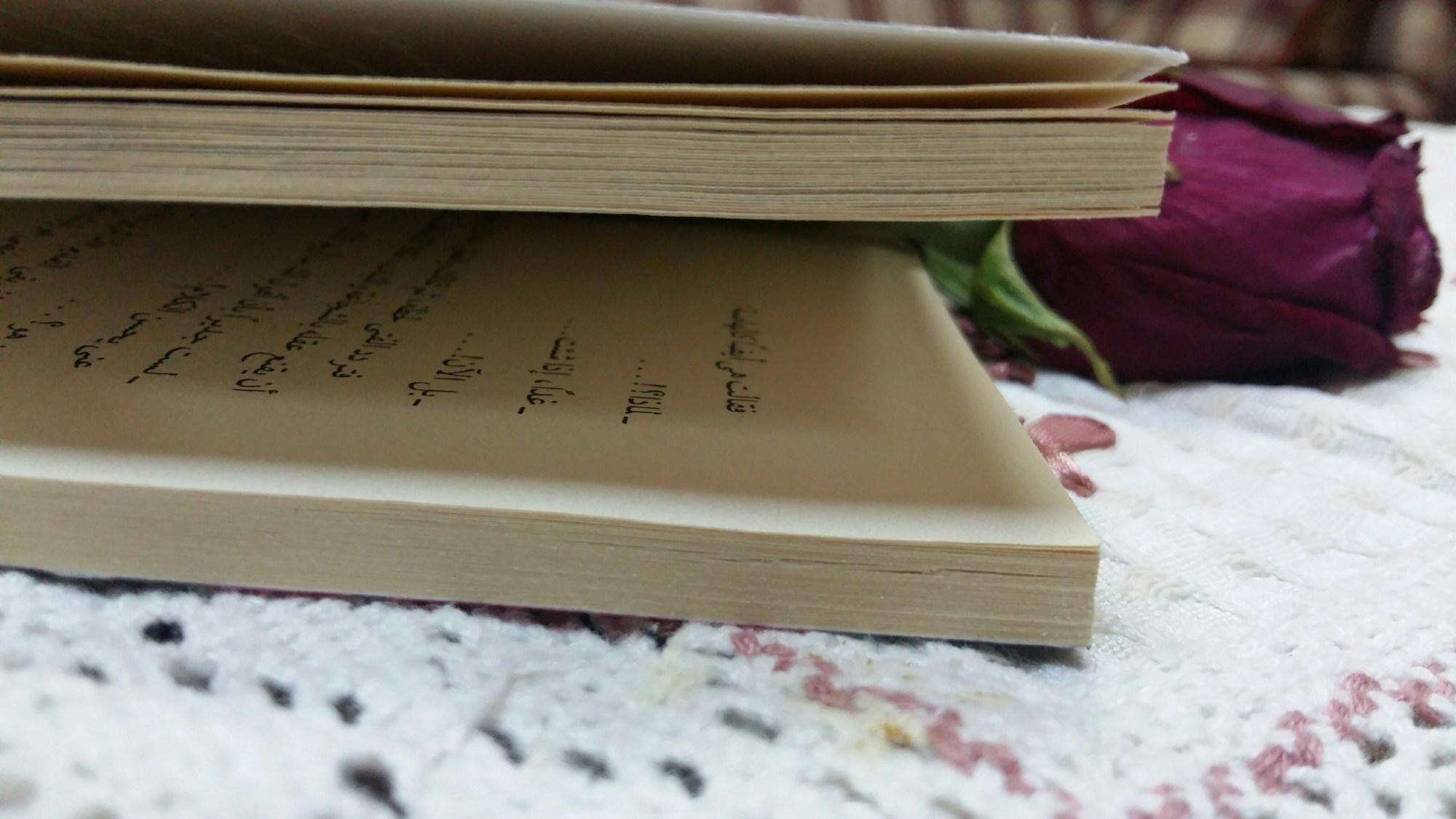 fadak__yousif's Cover Photo